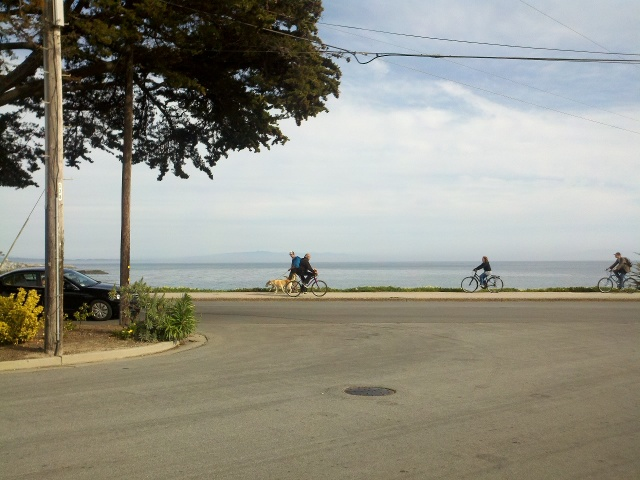 Tim and Doris live near West Cliff Drive, a very popular place to get outside.