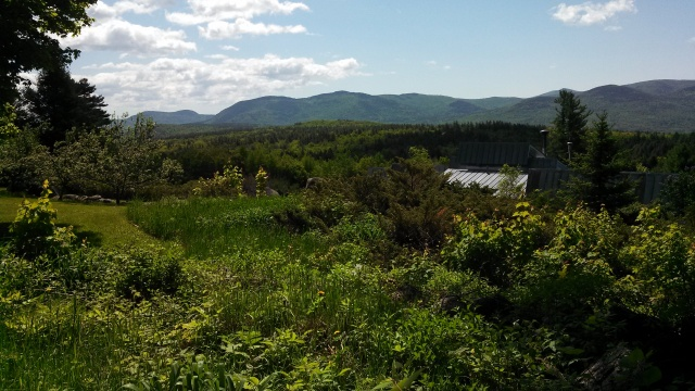 presenting a beautiful view of the Ossipee Mountains.
