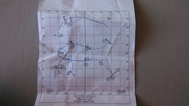 The course is different every time we compete. On arrival at the trial, I pick up the course map and have a chance