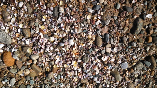 I've always been attracted to this jumble of shapes and colors along the beach.
