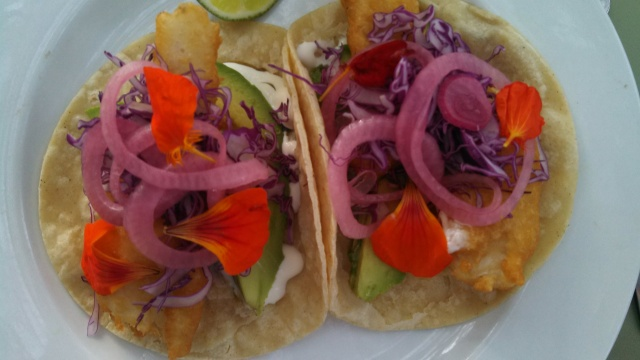 Fish Tacos with Eva's greens and edible flowers.