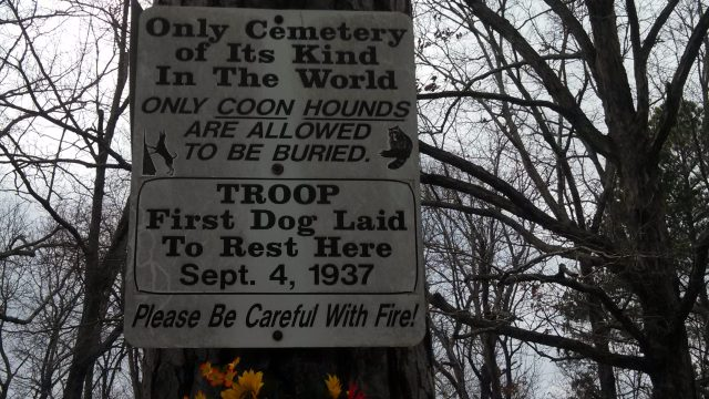 What I understood was that Troop's owner decided to let Troop rest for all time in one of their favorite places.