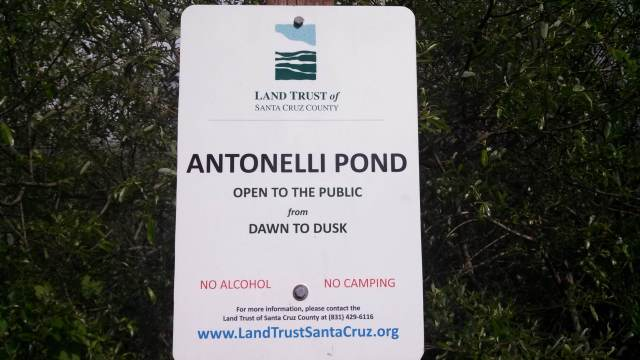 Antonelli pond sign